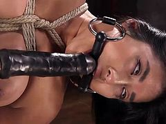 Mia is next on the list of hot women that want to be tied up and dominated. Suspended in the air, the bound and gagged beauty gets penetrated by that old favorite, the dildo on a stick. Coupled with that vibrator on her clit, she's soon to orgasm.