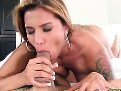 Ramon Nomar buries his rock hard pole in passionate Anita Toros mouth