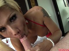 Blonde Thai shemale Pat squeezes her tits for milk and licks it from her fingers. Then Pat gives a blowjob, gives frottage pleasure and gets ass stretched with a big buttplug and fucked bareback.