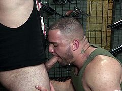 These manly studs want to get intimate in the gun club. They are both gay and love hardcore sex and dick sucking. Watch as they suck on those meaty schlongs and eat out each other's extremely tight buttholes. You can see that these hairy gay men are rock hard for each other all night long.