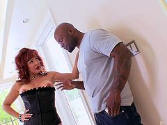 The bigger the better for this mature nympho, so we brought in Mr. Marcus to give her a real treat. Sexy Vanessa looks right into the camera as she sucks his cock. Bending over, she guides his man meat in from behind, taking every inch like a pro. She cums as he jack hammers her twat then lets him cum all over her red lipstick before rubbing his jizz all over his his dick.