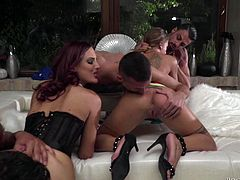 The room is full of sweaty dicks and wet pussies, and it definitely means that something special is being started here today. Join us and enjoy Rocco's award-winning live shows with hot group sex action! Must watch!