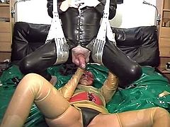 http://img1.sexcdn.net/0n/xl/ya_female_domination.jpg