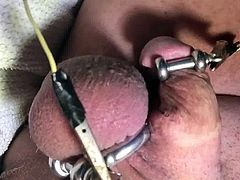My little cock electro