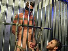 Pierce is in a bondage cage of sorts. He's bound, blindfolded, and unable to stop his partner from doing what he wants with him. What happens next is an agonizingly wonderful handjob and ball sucking. Oh yeah, when Pierce is finally allowed to cum, it's going to be a big one.