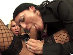These sexy Italian trannies capture it all ladyboys loving older women, who both love lingerie, and know how to take turns pleasing the other Little blonde nympho Pamela wants to give it to Salvina so badly that she barely gets all of Salvinas clothes off before shes buried balls deep in Salvinas butt. Salvina loves to suck her tranny lovers cock, and the taste of her spermy spumoni is the best dessert ever