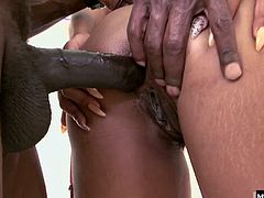 This dude has a huge chocolate cock and she gets right down on her knees so she can wedge her nose under the base of his shaft and lick his sweaty balls. Eventually he ejaculates all over her face, and she loves the feeling of jizz dripping down her chin.