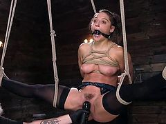 Today Abella Danger is in the full power of our master. The sexy babe is tightly bound with ropes and suspended in the middle of the room, waiting for what will happen. Join to enjoy brutal orgasms of Abella Danger!