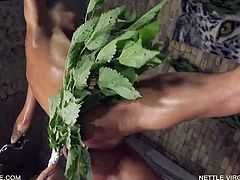 Nettle Virgin - Jessica - Queensnake.com Queensect.com