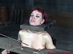 Tattooed bdsm sub with redhair dominated