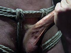 Dane is tied up and blindfolded. The man working him is an expert, giving him equal parts pain and pleasure. With his talented hands and toys, Dane is in for a grueling session before he's finally allowed to cum.
