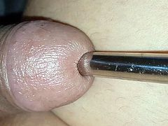 Insertion tube