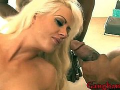 Busty lady Holly Heart DP by black cocks