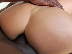 Jaw dropping white milf Alexis Fawx takes a huge black dick in her anus