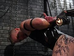 It looks as if a huge spider caught him and tied him with its web and, apart from everything else, this butcherly spider still intends to fuck his ass... Are you intrigued? Join and enjoy gay bondage with intense SM & hardcore sex with hot studs