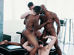 Join Noir Male and enjoy premium interracial foursome with glamorous black men. These guys prefer big and hard dicks in their mouths and asses, and they enjoy getting their bodies covered with sticky cum