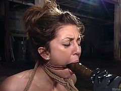 We've all been waiting for this for a long time and finally, a new video on Water Bondage! Believe me, it will be unforgettable and definitely deserves your special attention! Breath play, squirting orgasms and helpless wet slave girls!