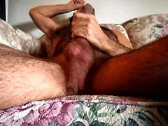 furry hairy daddy bear playing