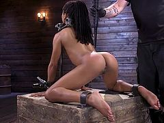 Blindfolded and with a ball gag in her mouth, this ebony babe gets whipped, while being fixed in a metal bondage device. But this was only the beginning. Kira Noir still has to experience rough electric torture... Join and enjoy!