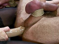 kinky cock torture & rough anal