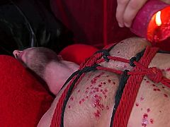 Transparent red tulle, red ropes and red drops of hot wax on Alex's muscular body - this is the most romantic Valentine's day and if you want more hot details, then join! Ricky Larkin presents one really sensual blowjob just for your pleasure!